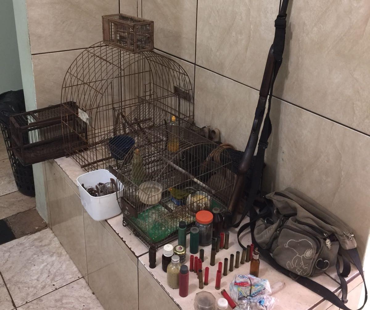PM apreende aves silvestres em cativeiro; homem é preso