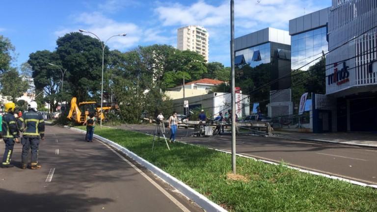 Árvore cai, derruba poste de alta tensão e motoristas ficam presos dentro de veículos, em Maringá