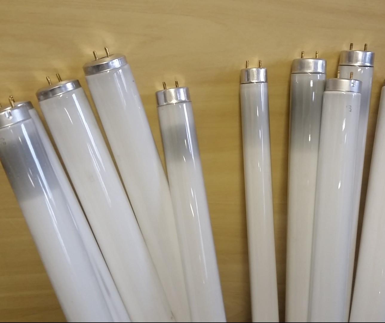 Prazo para solicitar recolhimento de lâmpadas encerra em 15 de junho
