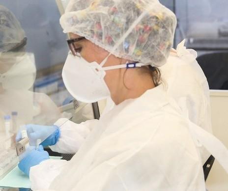 Coronavírus: Confira os dados deste domingo (08) em Maringá