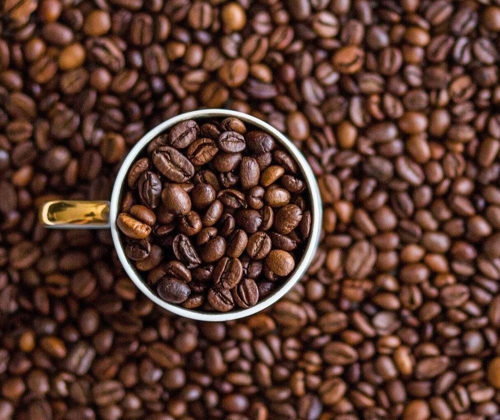 Café em coco custa R$ 7,60 Kg