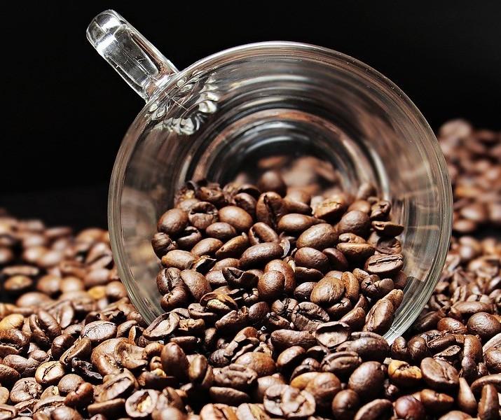Café em coco custa R$ 5,70 kg na região de Maringá