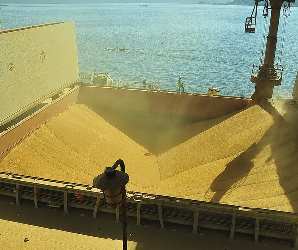 Estimativa é que Brasil produza 120,5 mi de toneladas de soja