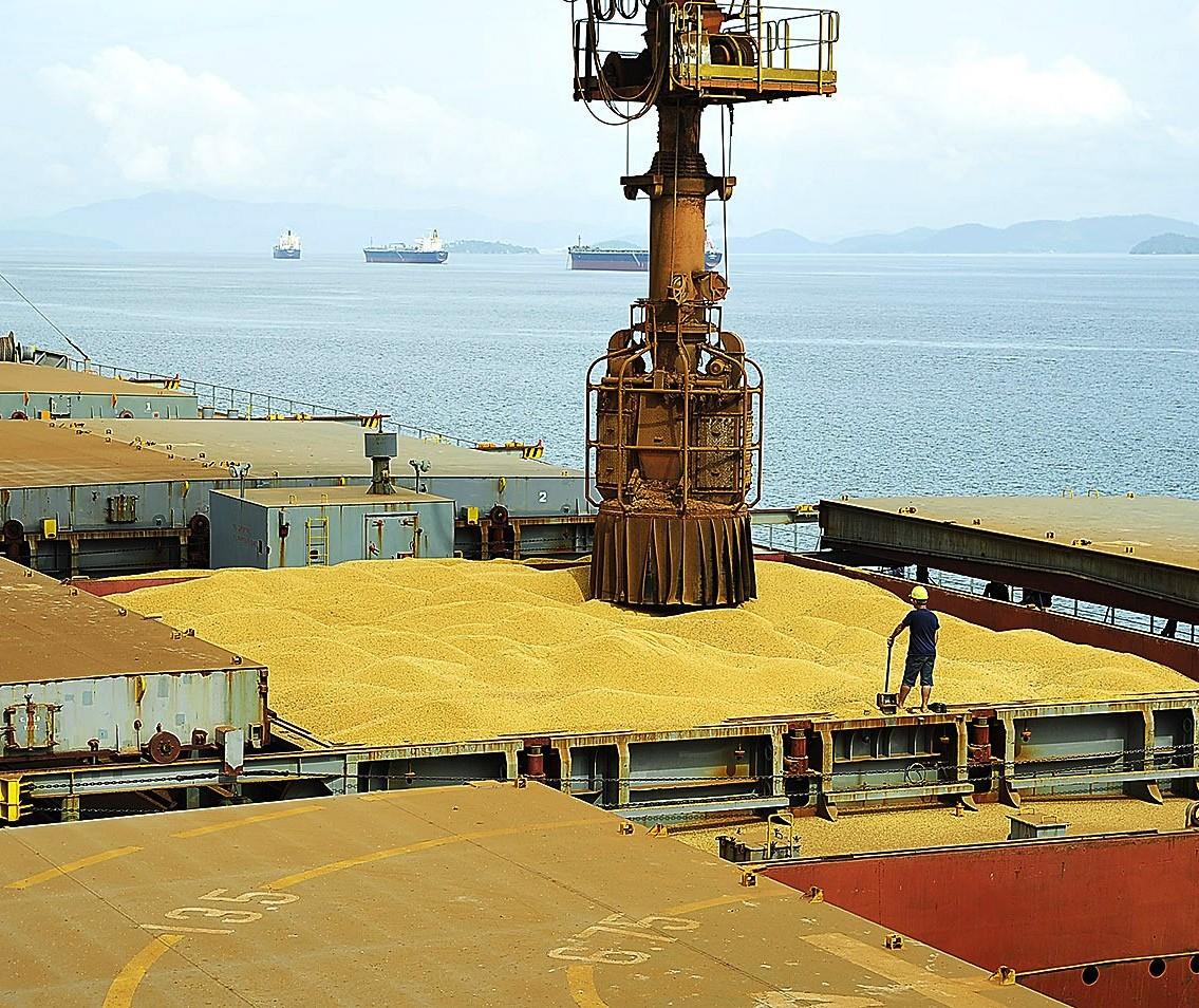 Exportações do complexo soja sobem 54% em fevereiro