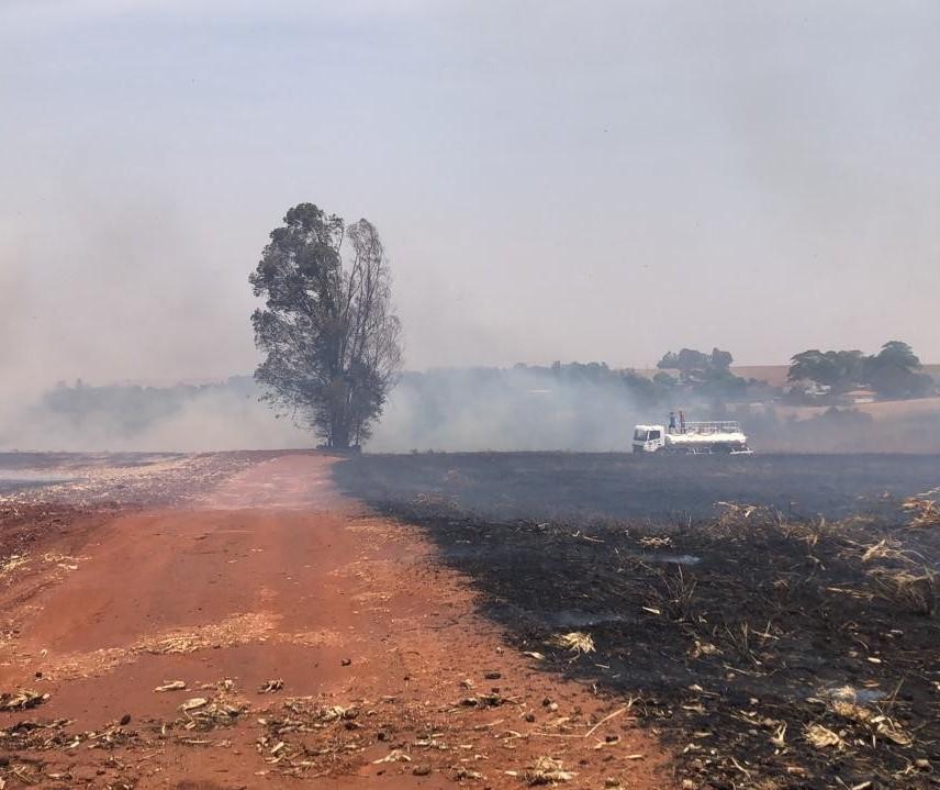 No combate a incêndios ambientais, bombeiros empregam todas as viaturas