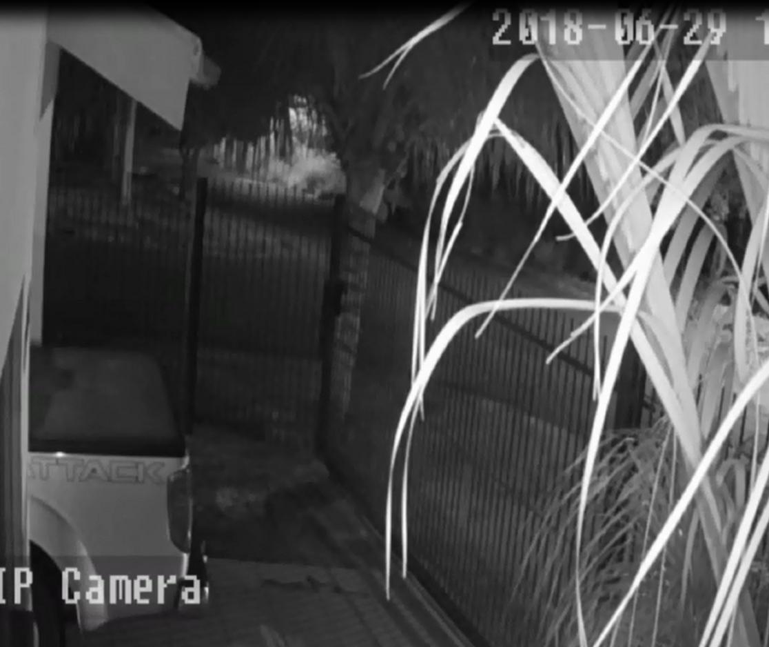 Polícia divulga imagens de furto à residência