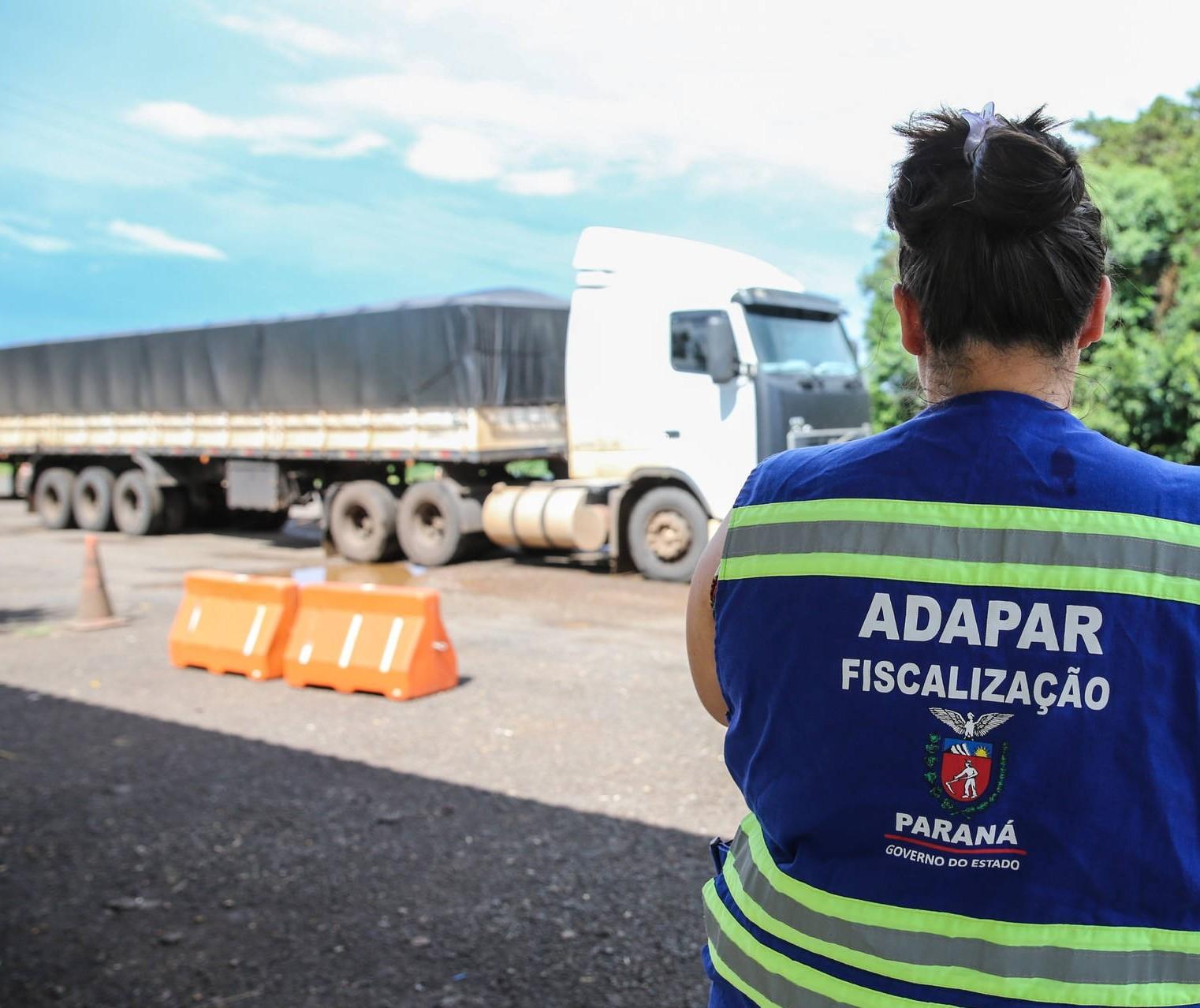 Governo do Paraná lança edital de concurso para reforçar defesa agropecuária