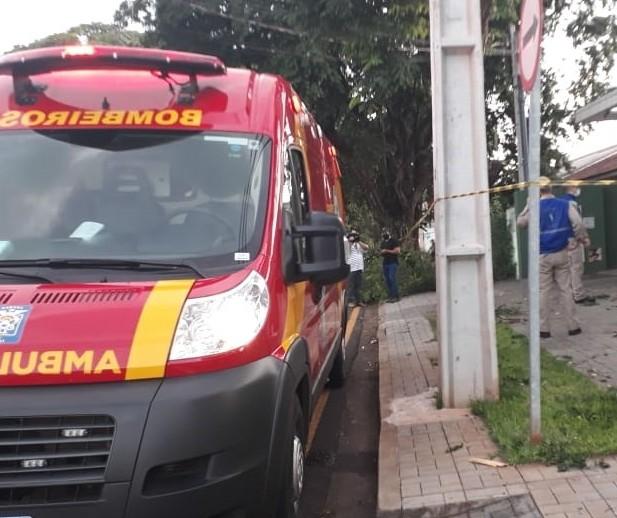 Homem morre ao cair de árvore enquanto realizava poda em Maringá