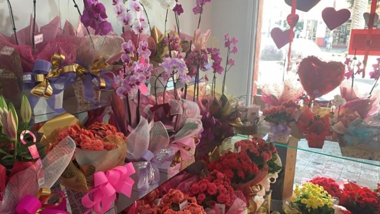 Floriculturas aumentam as vendas em até 300% no Dia das Mães