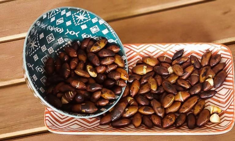Agricultores precisarão seguir novas regras para armazenar sementes