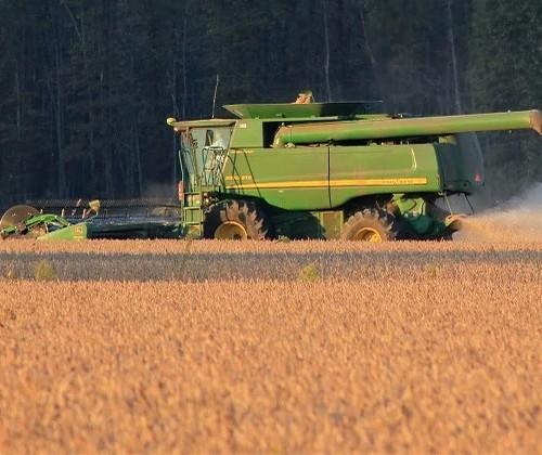 Média diária de exportação de soja quase dobra na 1ª semana de abril, diz Secex