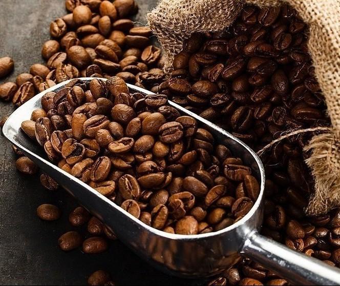 Café em coco custa R$ 7 o quilo na região de Campo Mourão