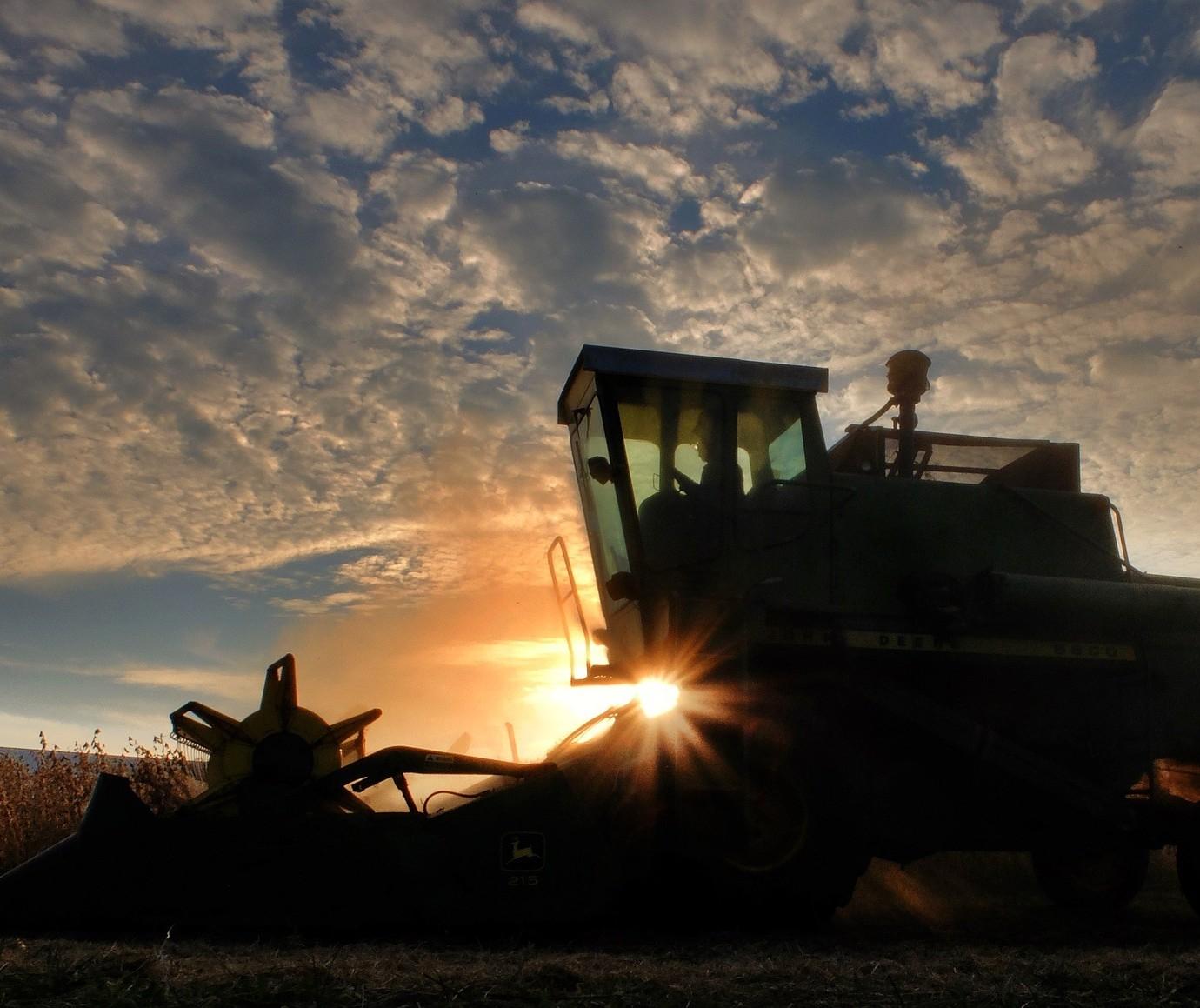 Datagro projeta safra 2020/21 de soja na América do Sul em recorde de 203,19 milhões de toneladas
