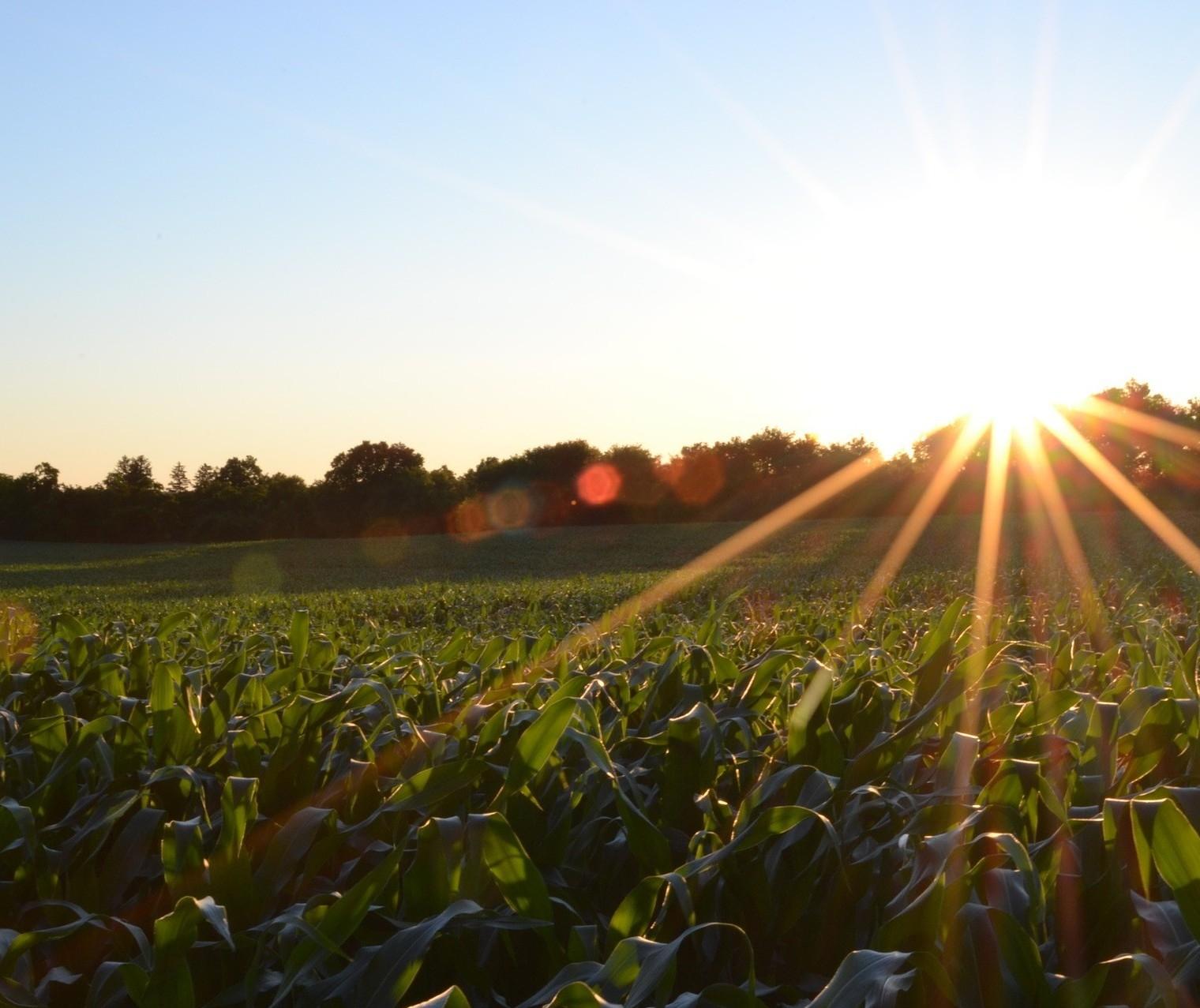 Exportações do agro batem novo recorde