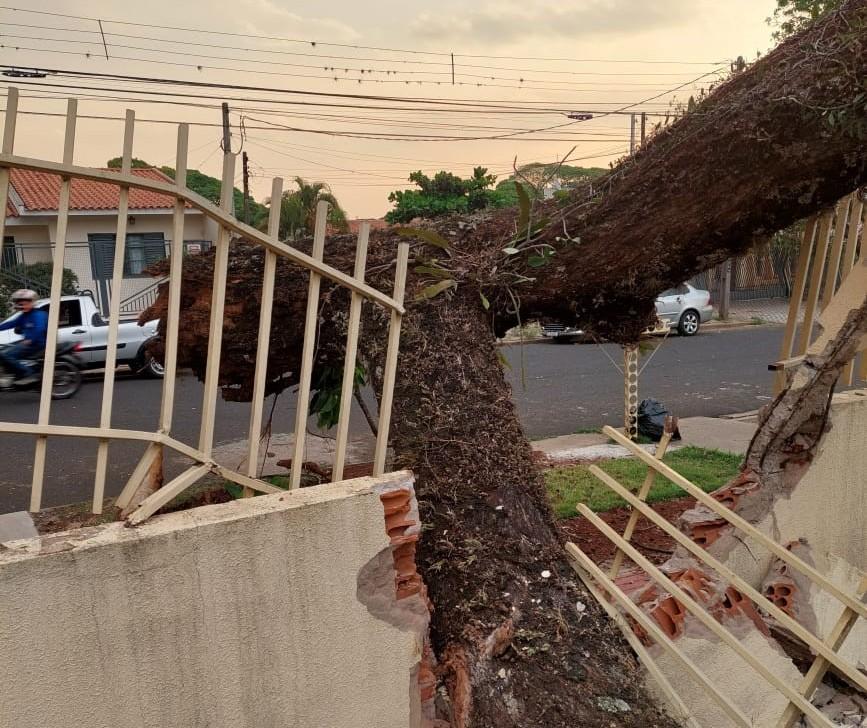 Chuvas e ventos fortes causam estragos na região noroeste