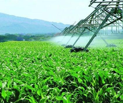 Quatro empresas têm 73% do mercado de fertilizantes no Brasil
