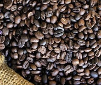 Café em coco custa R$ 6,41 kg em Maringá