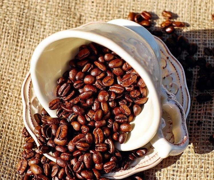 Café em coco custa R$ 6,92 kg em Maringá