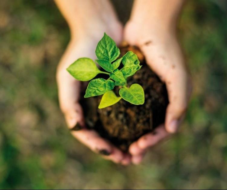 Financiamento da sustentabilidade será assunto de workshop em Curitiba