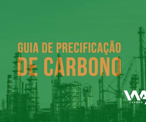 A precificação de carbono