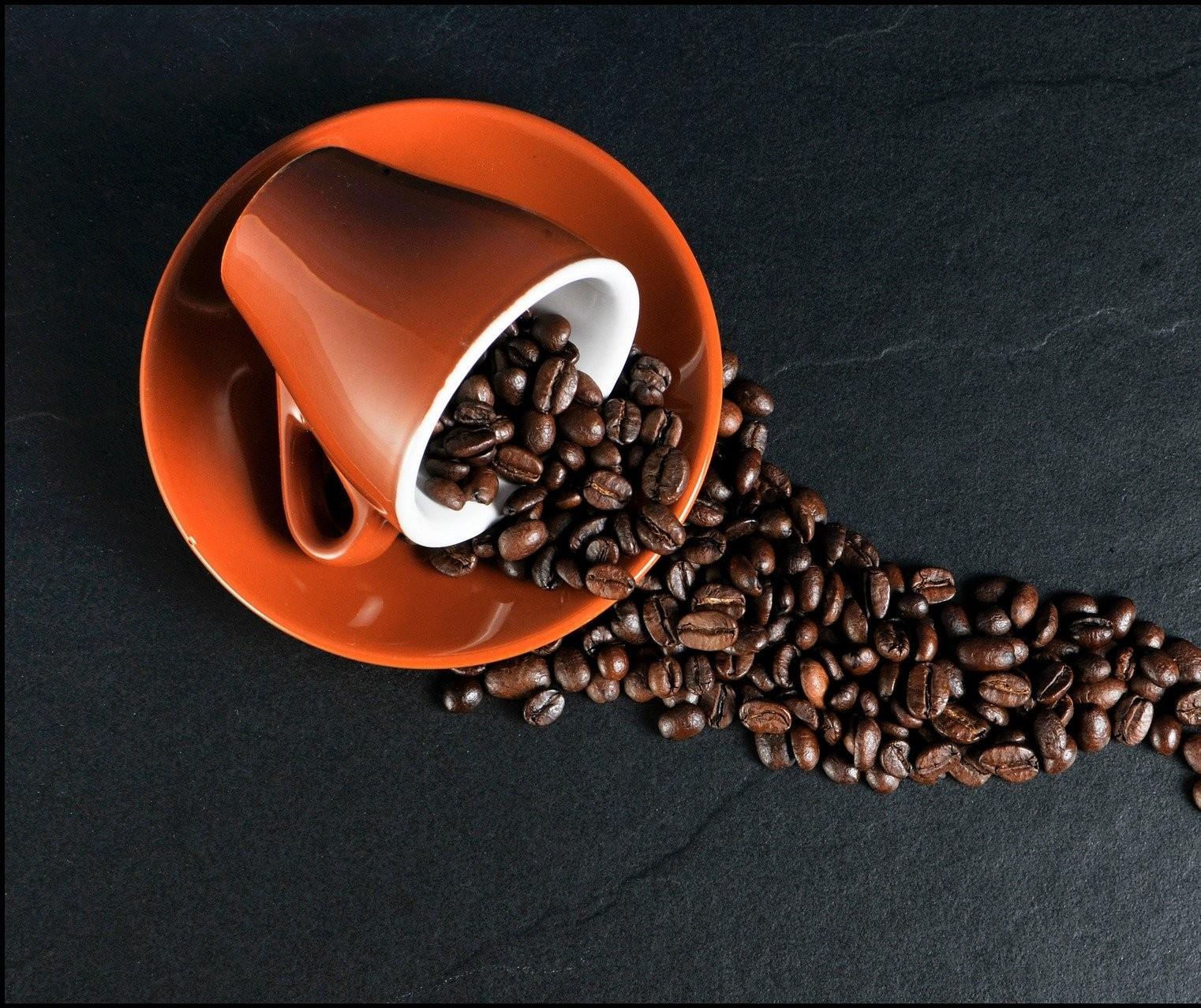 Saca do café beneficiado custa R$ 455,00
