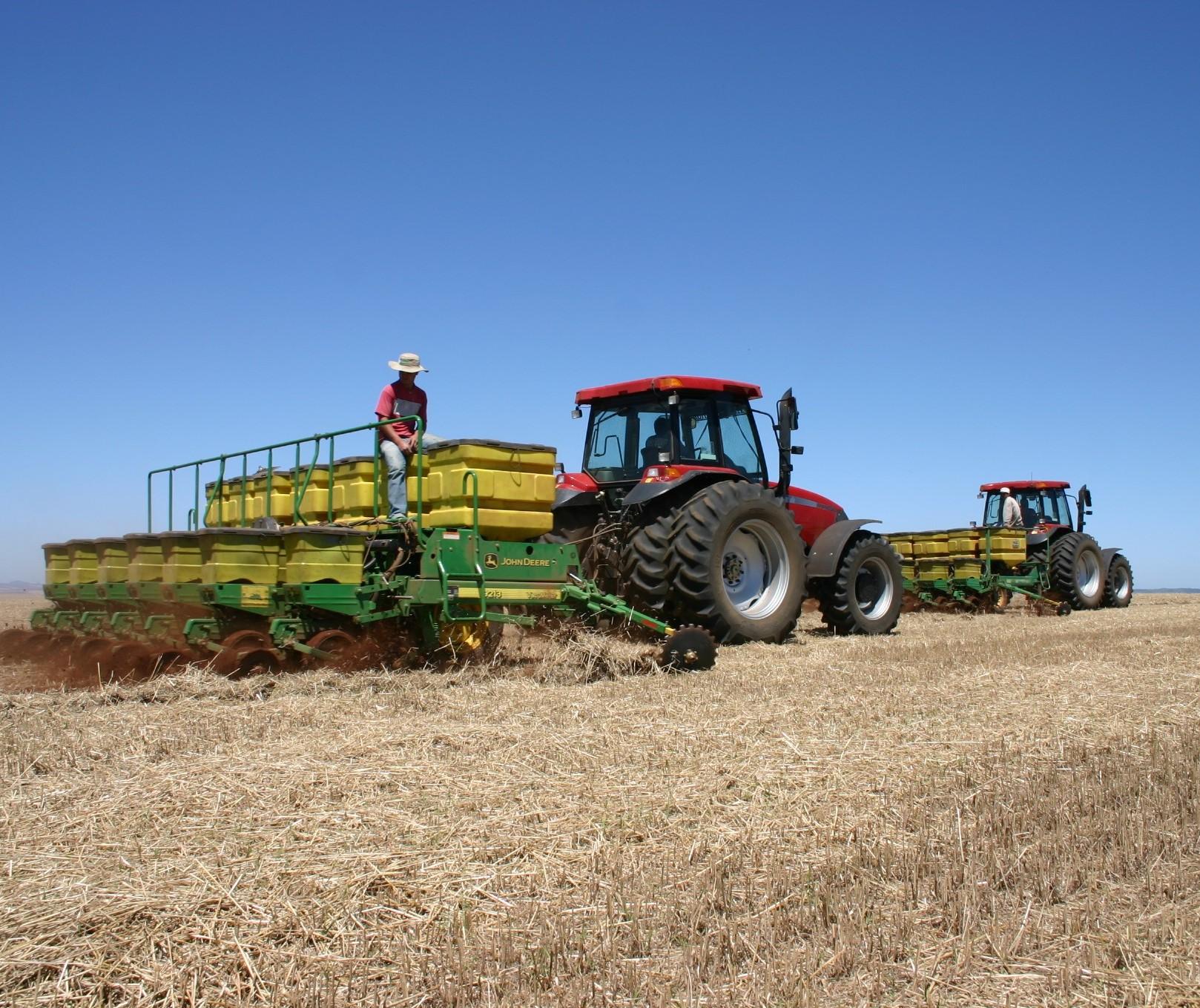 Chuvas dos últimos dias favorece plantio de milho
