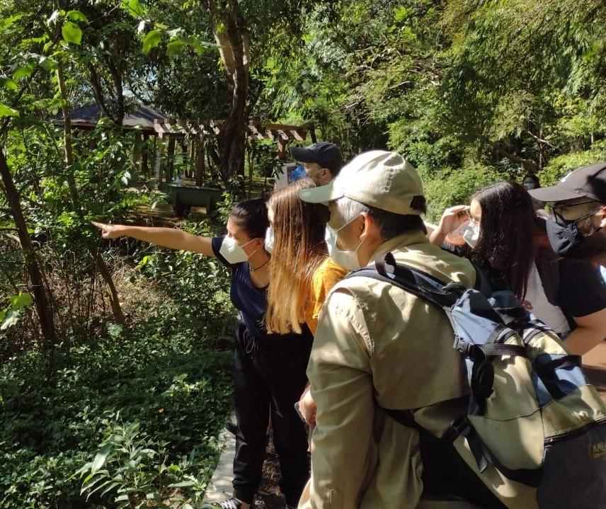 'Passaringá' reúne observadores e entusiastas no Parque do Ingá