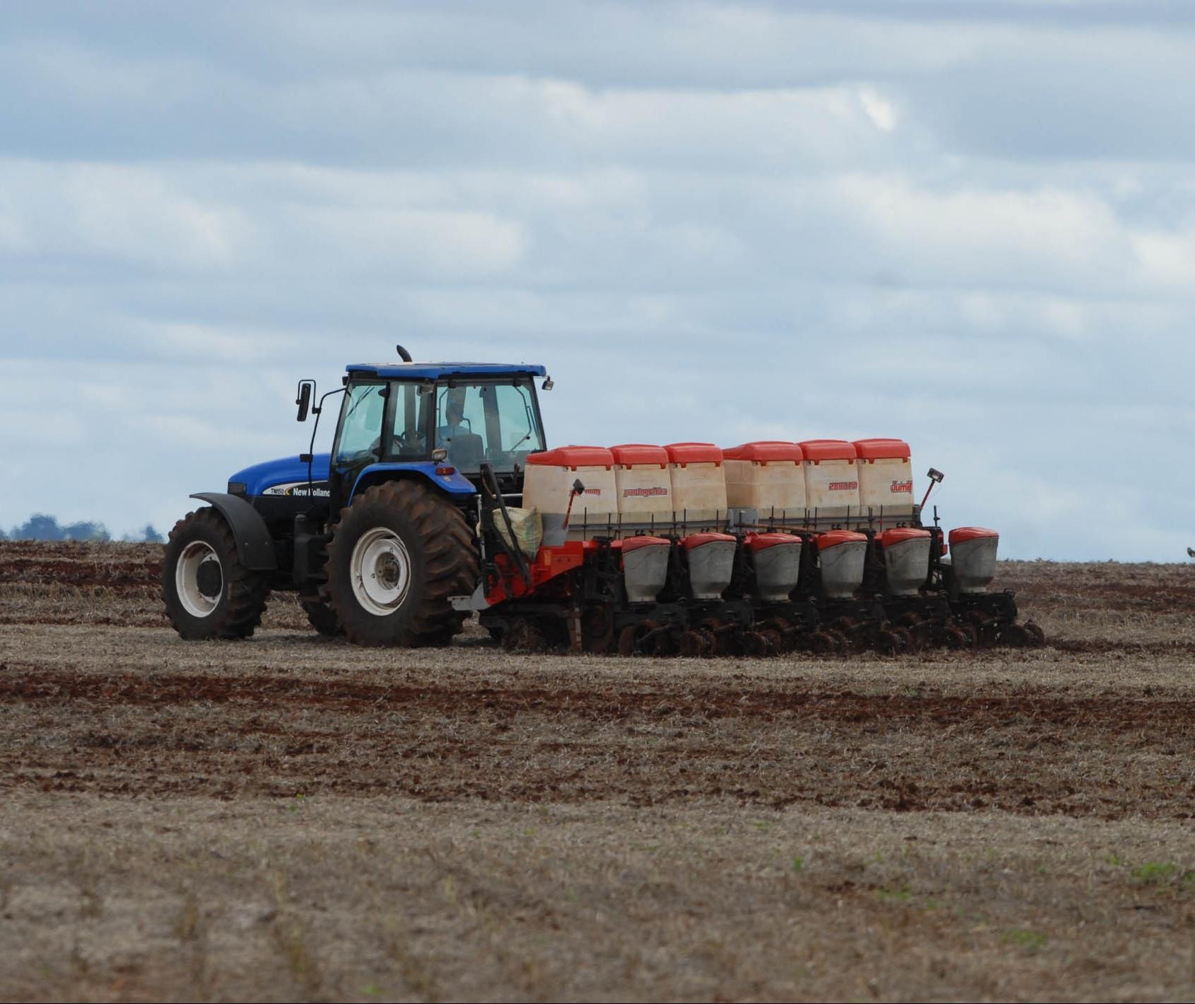 Paraná dá início ao plantio do milho safrinha