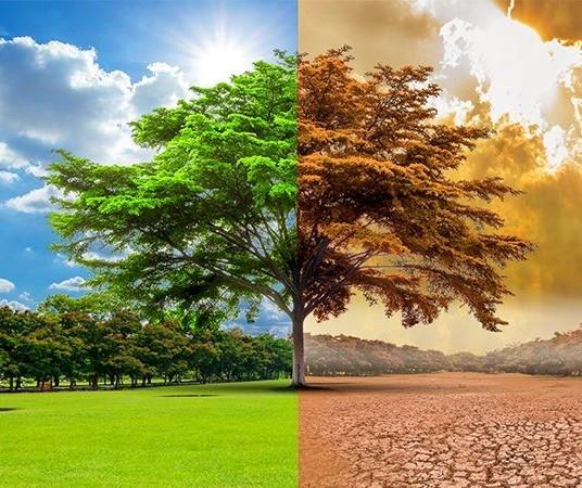 Mudanças climáticas vão afetar todas as instituições financeiras