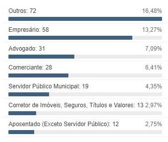 Profissões mais comuns entre os candidatos (foto: TSE)
