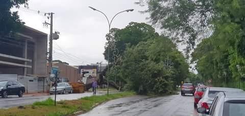 Foto: Divulgação/Defesa Civil