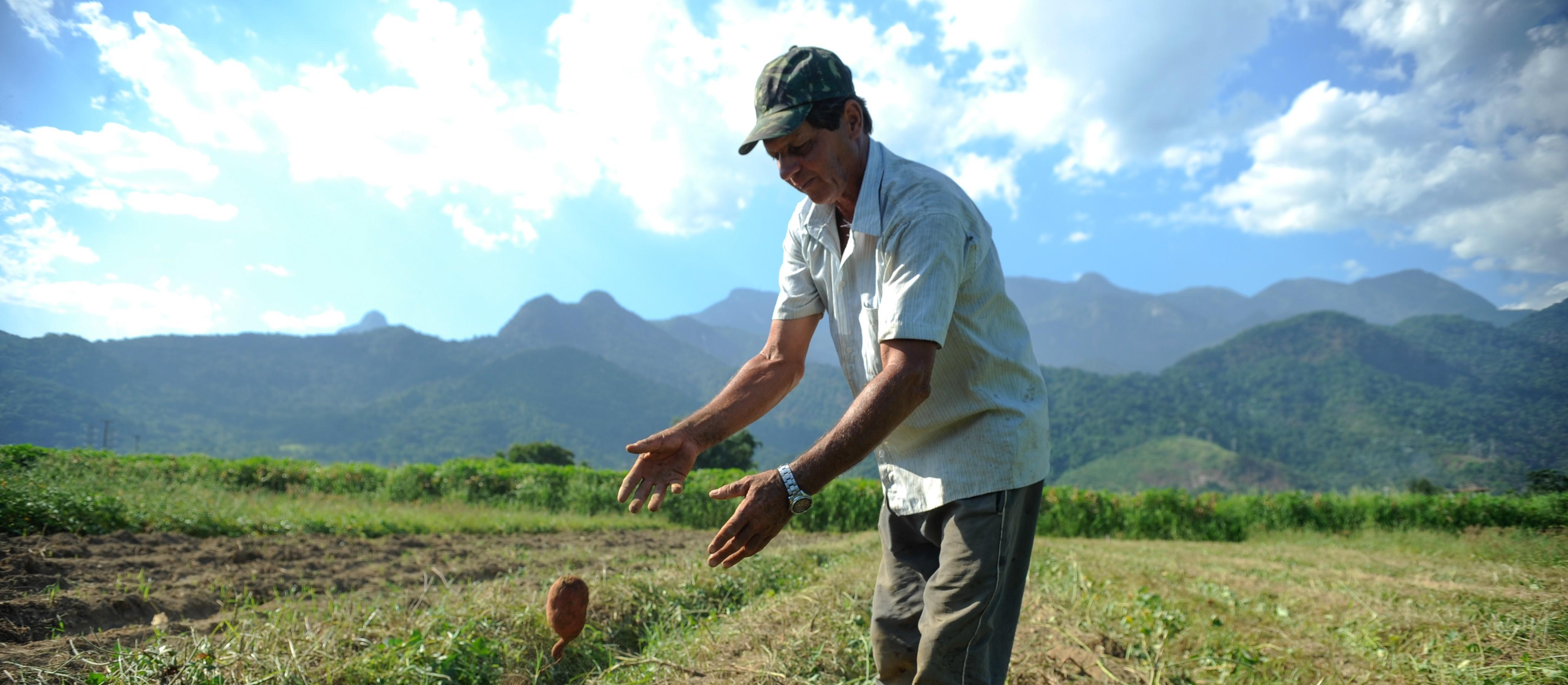 Dia do Agricultor é celebrado neste dia 28 de julho