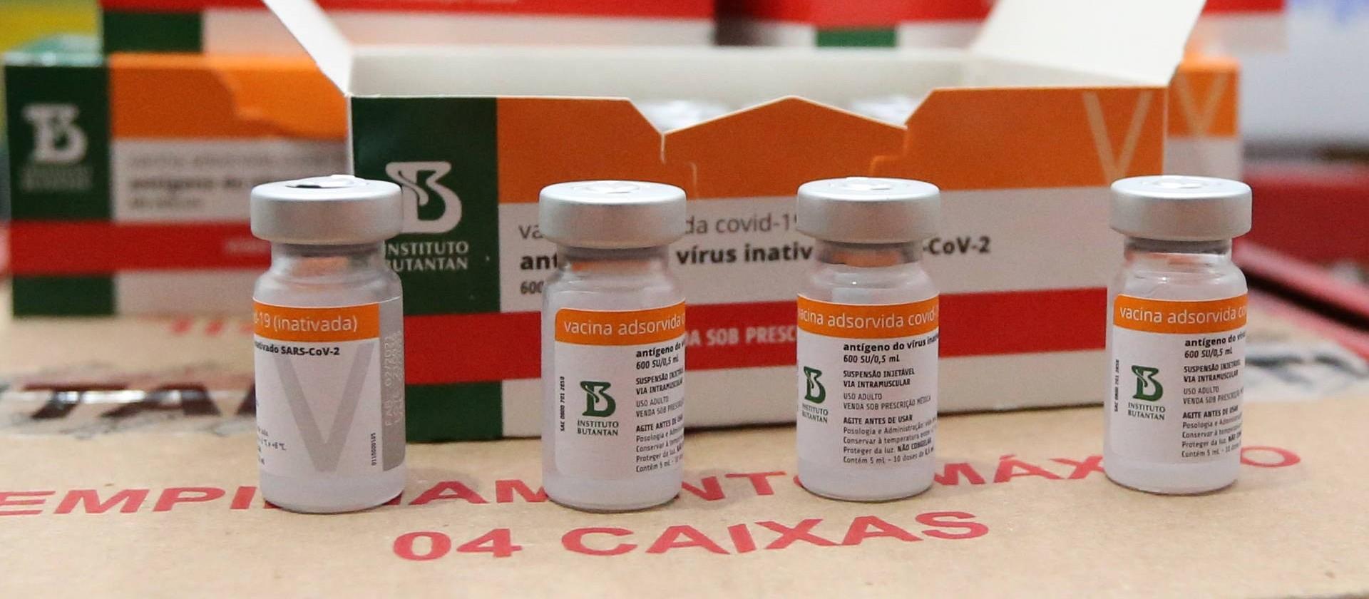 Gestantes e puérperas: é seguro se vacinar contra a Covid-19?