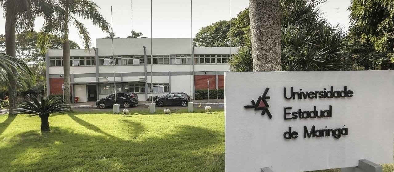 UEM quer pagar multa à Sema com plantio de novas árvores