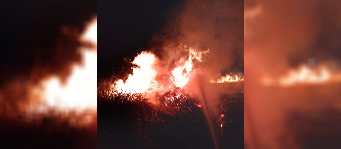 Incêndio em vegetação quase atinge hospital de Paranavaí