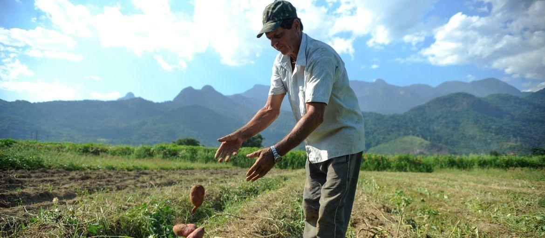 Aposentadoria rural tem regras específicas para quem trabalha no campo