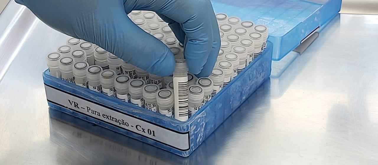 Prefeito de Floresta e outros 11 casos suspeitos de coronavírus testam negativo