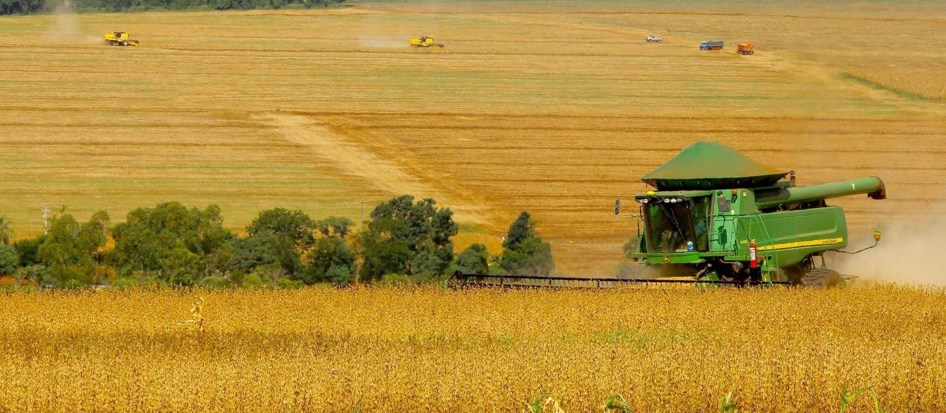 Agricultor tem papel fundamental na preservação do meio ambiente
