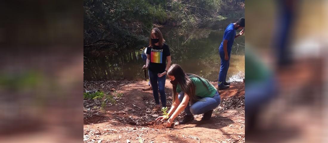 Lagoa do Horto Florestal de Astorga está secando, diz Sodema