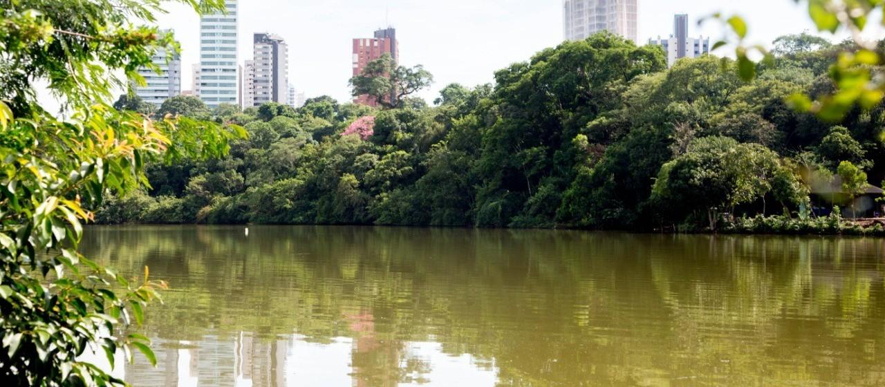 Lago do Parque do Ingá está 'secando' por falta de áreas permeáveis