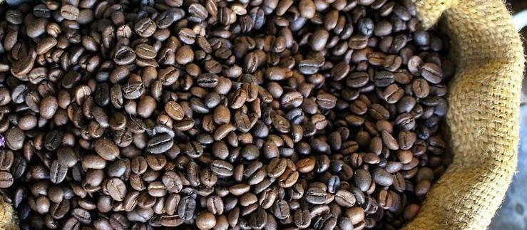 Café em coco custa R$ 6,80 o quilo em Maringá