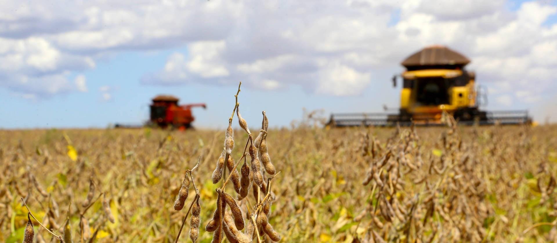 Produtores de soja do norte/noroeste preparam as máquinas para o plantio