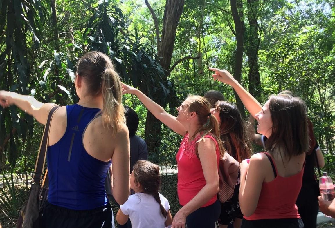 """""""Passaringá"""" promove observação no Parque do Ingá"""