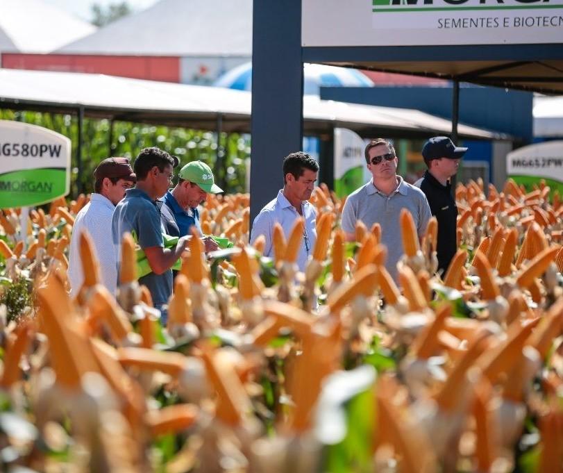 Participação de produtores do Show Rural em Cascavel é alta