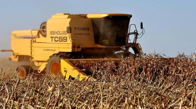 Produtores rurais estão sendo vítimas de ações de criminosos