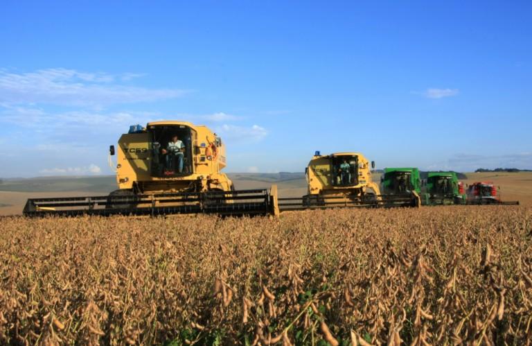 Exportações brasileiras de soja atingem 14,6 toneladas em abril
