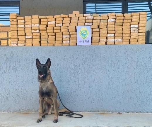 Cães da PM encontram 213 kg de crack em bitrem