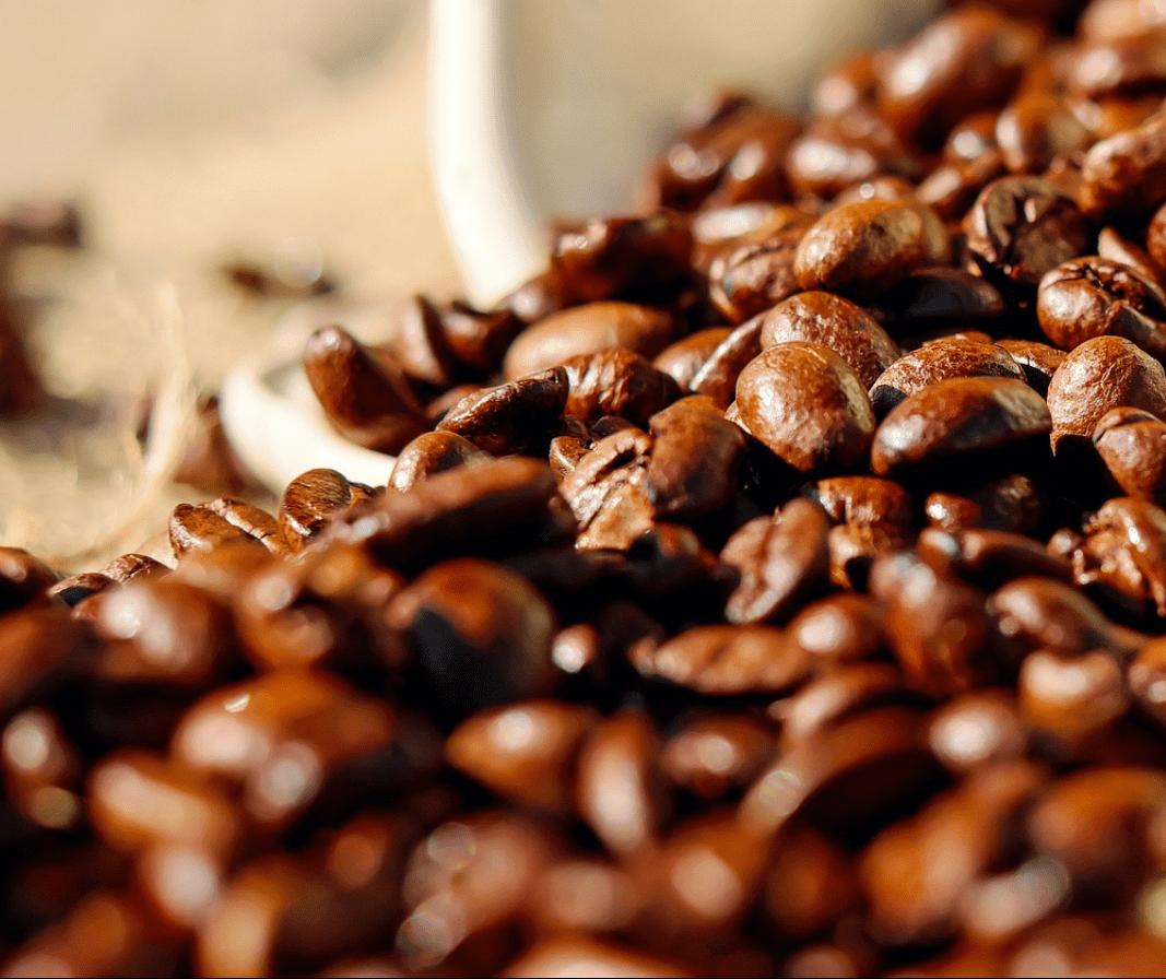 Café em coco custa R$ 7,15 o quilo em Maringá