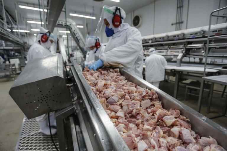 China e Japão compraram 1/4 da carne de frango negociada no mundo em 2020
