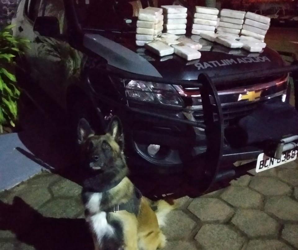 Polícia Militar apreende tabletes de cocaína avaliados em R$ 1,2 milhão